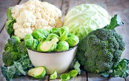 Gut Hastalığında Beslenme