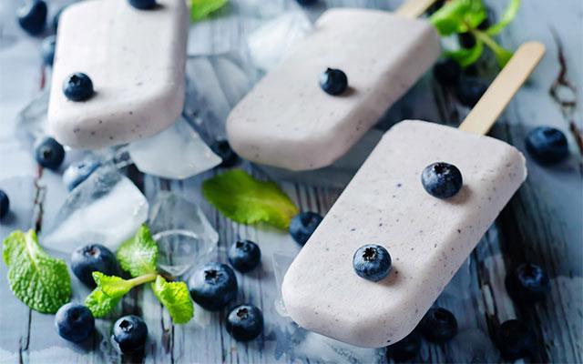Yaban Mersinli Dondurma